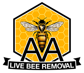 AALive Bee Removal